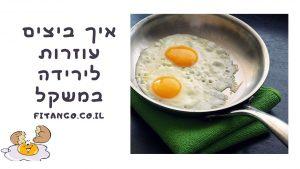 ביצים לירידה במשקל